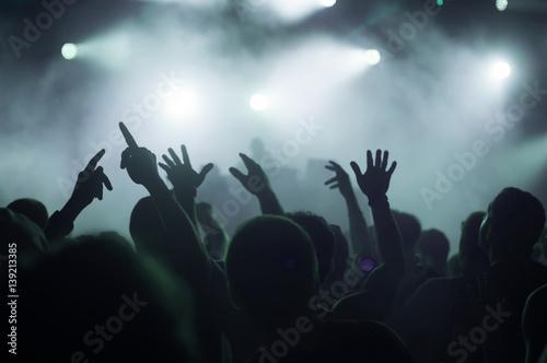 festival crowd - 139213385