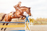 Bay horse with rider girl jump over hurdle on show jumping competition - 139260704