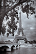 Monochrome vintage view of Eiffel tower framed with the tree, Paris