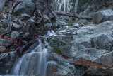 Madera Canyon Stream