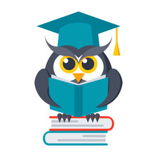 Wisdom Concept Owl  Books In Graduation Cap Sticker