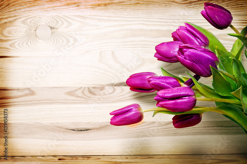 tulips-isolated-on-brown-background