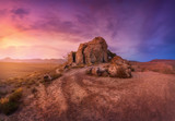 Desert with lonely rocks against multicolored cloudy sky at sunset. Blue, purple and red clouds. Panoramic. Colorful landscape with trail, stones, grass and sunlight. Nature background. Adventure