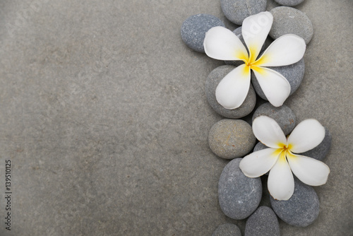 Fotobehang Spa Two frangipani with spa stones on grey background.