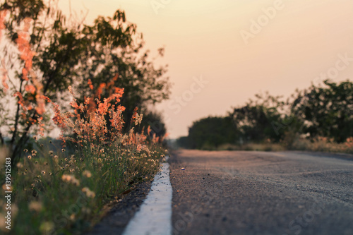 Meadow flowers, beautiful fresh morning in soft warm light. Vintage autumn landscape blurry natural background.