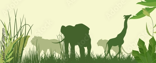 Fototapeta Horizontal vector illustration of Green silhouettes of african savannah with animals.