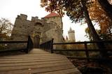 Small castle Kokorin