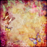 Vintage floral background with Australian butterflies. Colorful aged canvas textured background. Copy space for text.