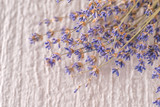 bunch of dried lavender flower on white background, product photography for aromatherapy
