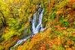 Waterfall in autumn mountain forest