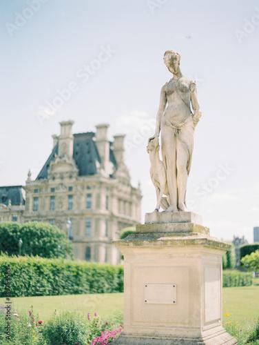 Statue in Paris Poster