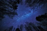 Fototapety Night sky with the Milky Way over the forest and trees surrounding the scene.