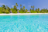 Maldives paradise beach. Perfect tropical island. Beautiful palm trees and tropical beach. Moody blue sky and blue lagoon. Luxury travel summer holiday background concept. - 139814169