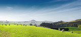 beautiful pasture with animals near hill - 139828149