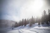 passeggiata in neve fresca