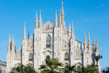Milan Duomo cathedral with palm trees, blue sky