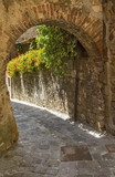 arch of wall in tuscany city in Italy