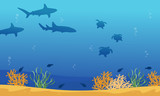 Landscape of underwater with shark and turtle