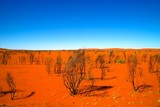 red dirt desert australia outback horizon