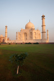Grass and Tree at Taj Mahal at Morning Sunrise Reflecting Off Marble, Nobody Present