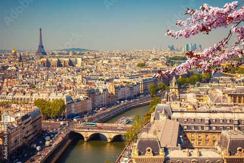 Aerial view of Paris at springtime, France Poster