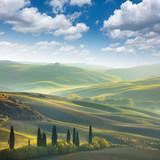 Fresh Green tuscany landscape