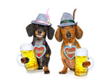 bavarian oktoberfest beer dachshund sausage couple of dogs