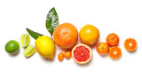 Fototapety various citrus fruits