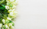 Fototapety Spring tulips lying on white wooden table background