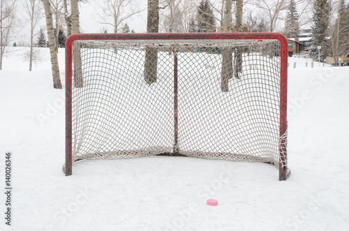 Hockey net with pink hockey puck outdoor rink Poster
