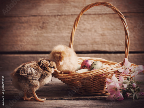 Staande foto Kip Chickens and easter eggs on a wooden background