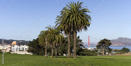 Fort Mason landscape, San Francisco, with the Palace of Fine Arts and the Golden Gate Bridge in the background Poster