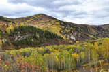 Altai mountains, covered with colorful autumn forests