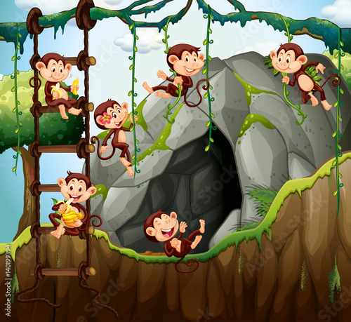 Scene with monkeys playing in the cave