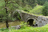 Traditional stone bridge in Thessaly, Greece
