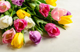 Beautiful festive bouquet of tulips on white background