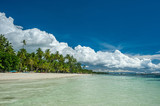 Tropical beach with palm trees at Philippines