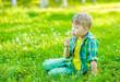 Boy blowing dandelion on green grass