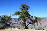 Grand Canyon, Arizona, North America