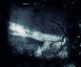 Spooky landscape with scary tree. Dark nature wallpaper.