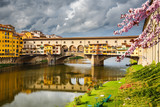 Ponte Vecchio in Florence at spring, Italy