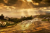 the rice fields on terraced in north Thailand, Mae jam, Chiang Mai, Thailand.