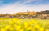 Tuscany, Volterra town skyline and field of flowers in springtime. Italy