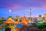 View of Tokyo skyline at twilight