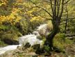 Asturias en otoño