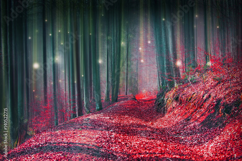 Canvas Betoverde Bos Magic fairytale forest with fireflies lights and mysterious road
