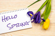 hello spring message over post card with tulip and iris