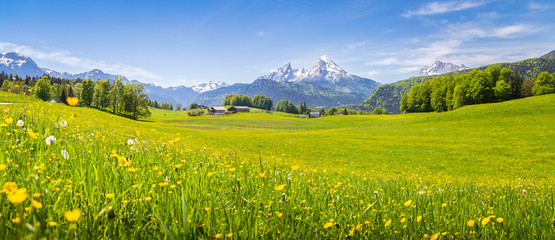 Idyllic landscape in the Alps with blooming meadows in summer © JFL Photography