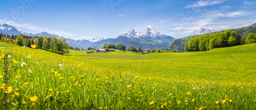 Idyllic landscape in the Alps with blooming meadows in summer - 140642316
