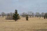 Moor und Heide Landschaft warten auf Frühling